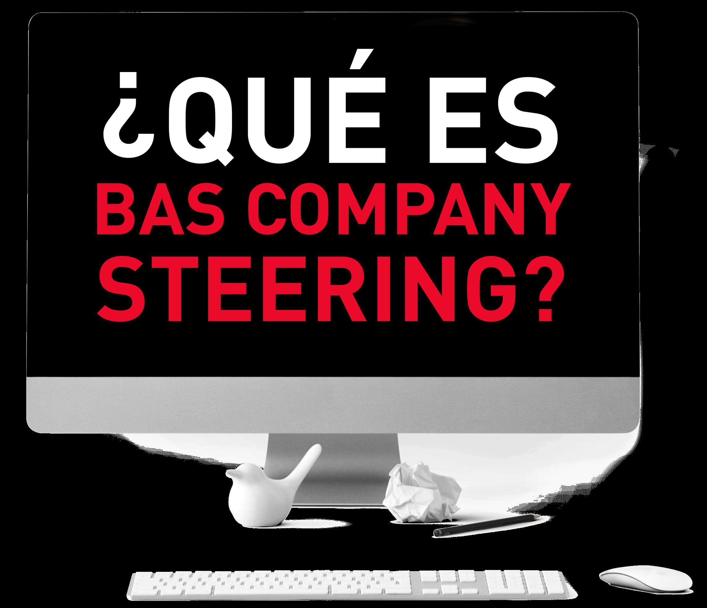¿Qué es Bas Company Steering Software de Gestión ERP?
