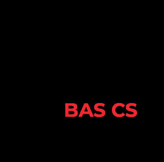 5 razones para elegir BAS CS Software ERP